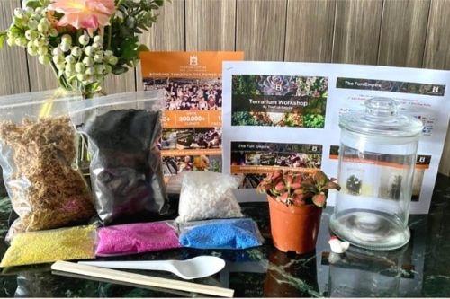 Terrarium Making Home Kit - DIY Creative Kits Singapore